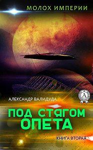 Александр Валидуда -Под стягом Опета
