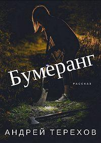 Андрей Сергеевич Терехов -Бумеранг