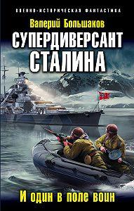 Валерий Большаков -Супердиверсант Сталина. И один в поле воин