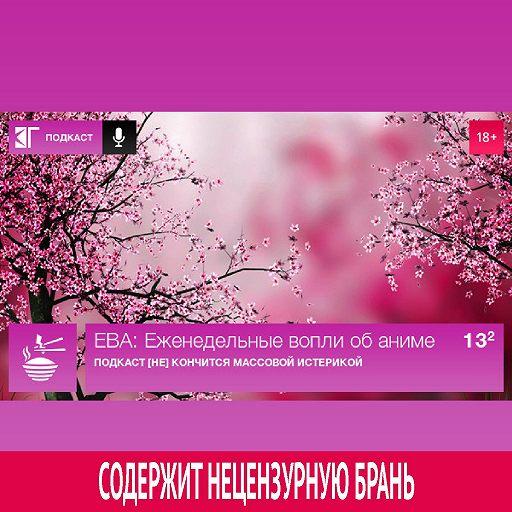 Выпуск 13.2